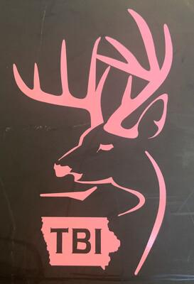 Pink Alt TBI Logo