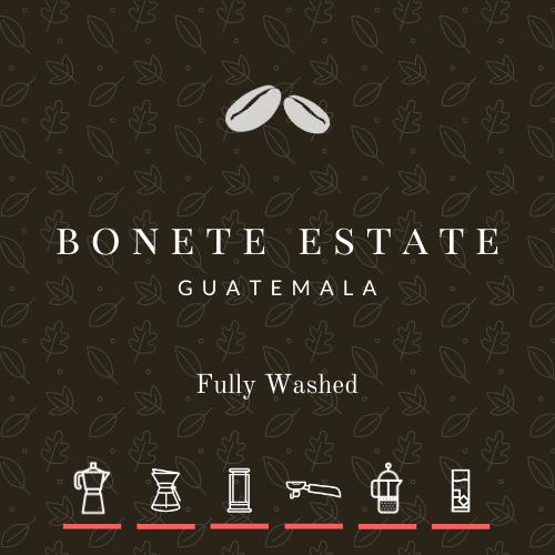 NEW! Guatemala Bonete Estate Washed