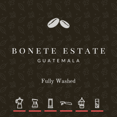 Guatemala Bonete Estate Washed