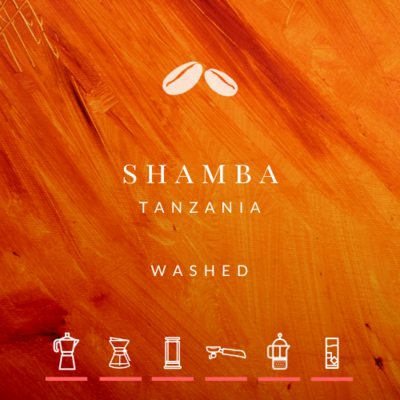 NEW! Tanzania Shamba Washed