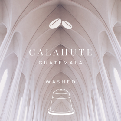 NEW! Guatemala Calahute Washed (20 Nespresso® Biodegradable & Compostable Capsules)