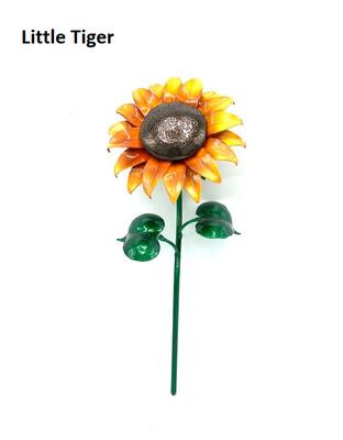 Single Aluma Sunflower