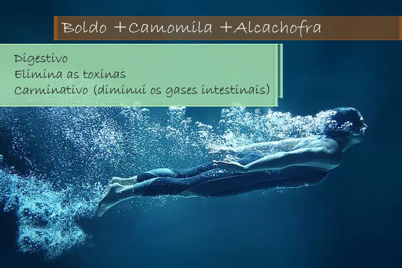 Boldo extrato seco 200mg; Camomila 50mg; Alcachofra extrato seco 250mg - Cápsula