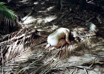Woman in Palm Tree Forest, Australia