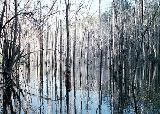 Woman in Drowned Forest, Australia