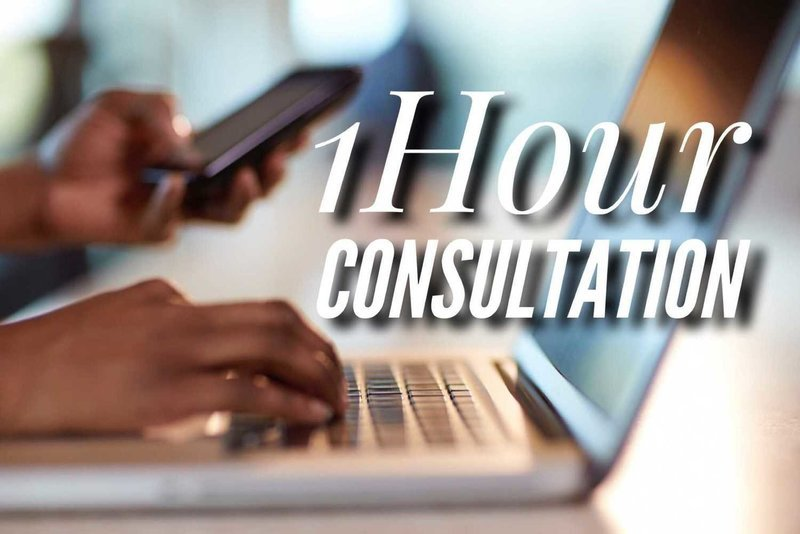 1 Hour Consultation {None Students)