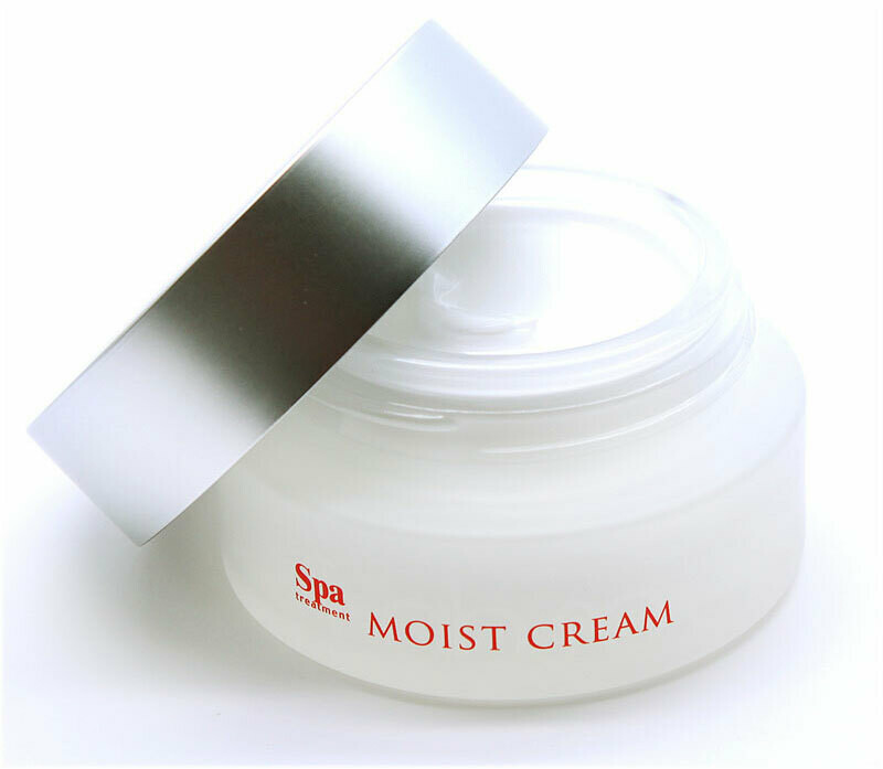 Spa treatment abso MOIST CREAM 30g