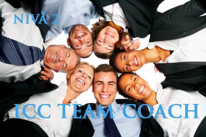 Team Coach / level 2