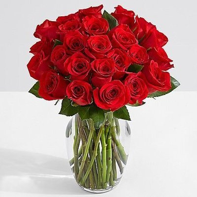 Two Dozen Red Roses w/Glass Ginger Vase