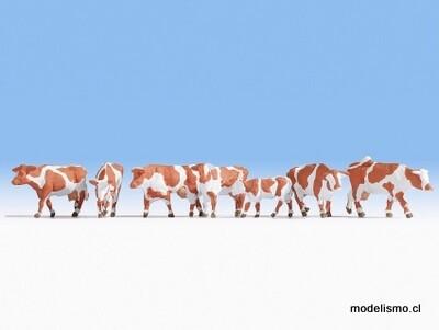 Noch 15726 Vacas, marrón y blanco