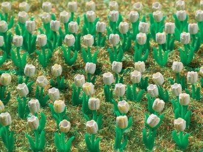 Vollmer 45125 H0 tulipanes blanco, 120 piezas