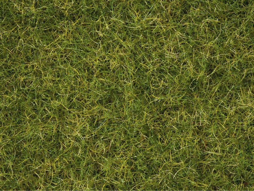 Noch 07076 Master Mezcla de hierbas, pradera verano,