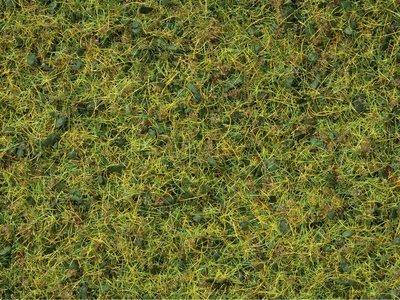 Noch 07077 Master Mezcla de hierbas, Pradera de vacas, 2,5 - 6 mm