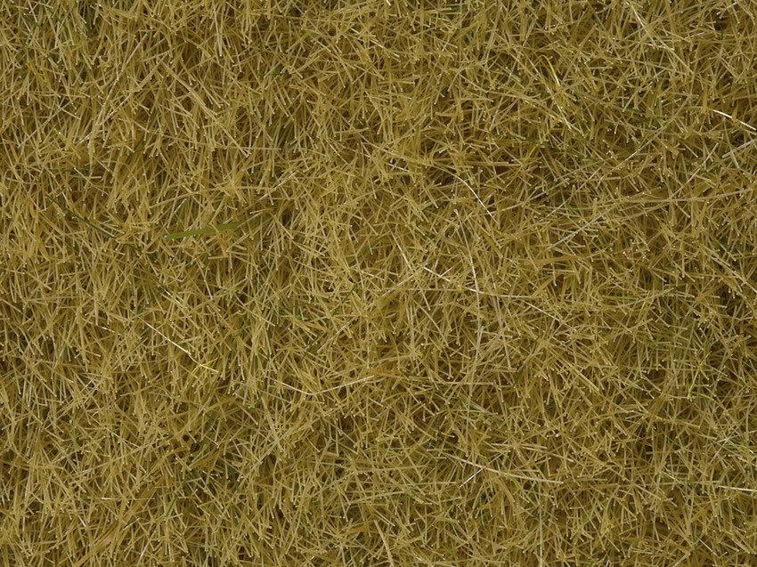 Noch 07091 Hierbas silvestres de pradera, beige, 6 mm