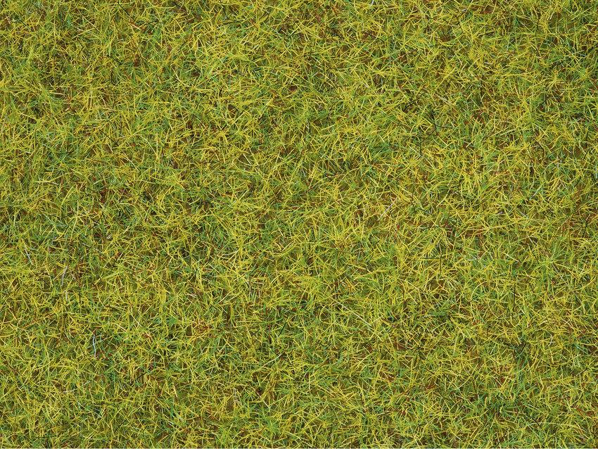 Noch 08310 Hierbas pradera veraniega, 2,5 mm