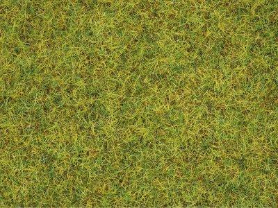 Reserva anticipada Noch 08310 Hierbas pradera veraniega, 2,5 mm