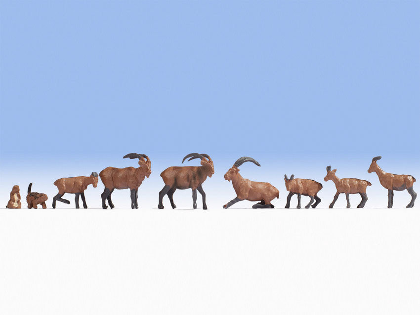 Noch 15742 Animales alpinos