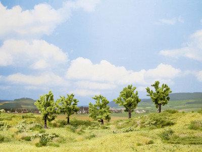NOCH 25001 Clásico 5x árbol frutal verde 8cm.