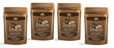 Lithicin™ 300 grams 4 or more (each)