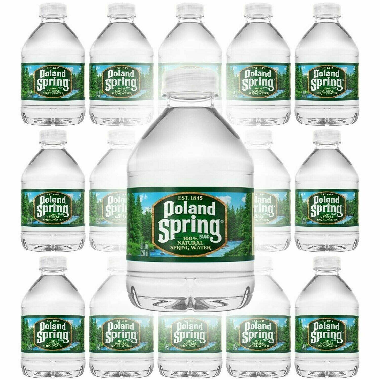* Poland Spring Water 40-0.5 Liter