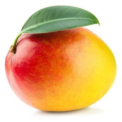 * Mango 1 Piece