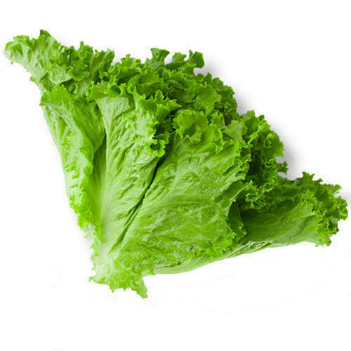 * Green Leaf Lettuce 1 Head