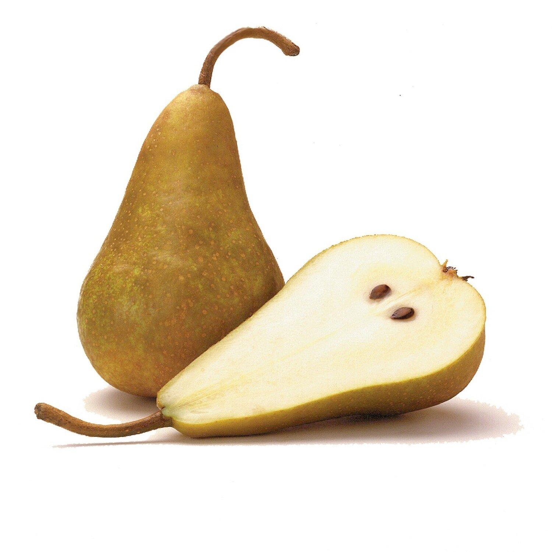 * Pears Bosc 1 Piece