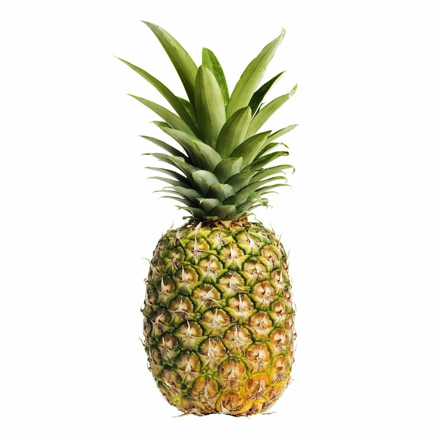 * Pineapple Golden Whole 1 Piece