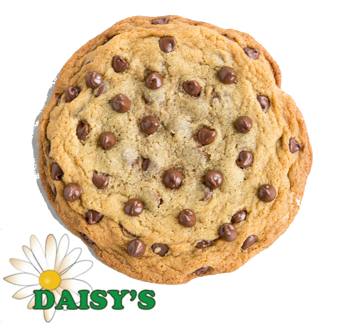 * Daisy's Bakery Chocolate Chip Cookie 12 Count