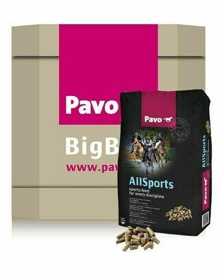 Pavo AllSports bigbox