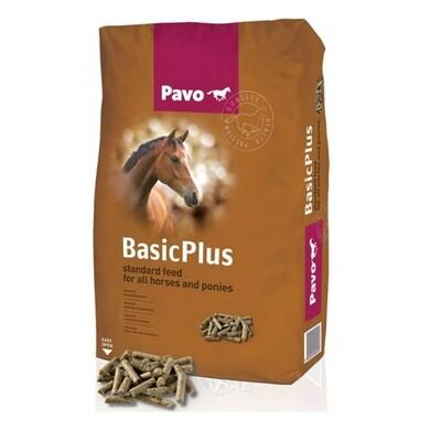 Pavo Basic Plus