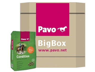 Pavo_Condition_Box