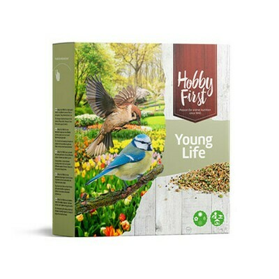 Hobbyfirst Young Life 850gr