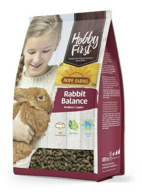 Hobbyfirst Rabbit Balance