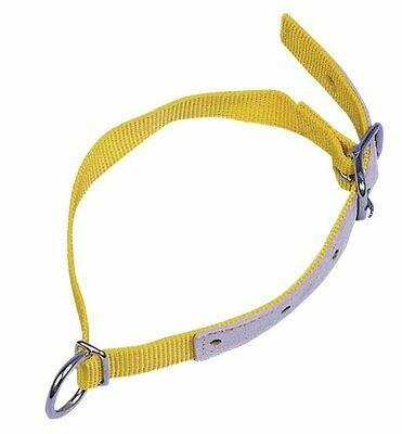 Halsband voor schapen 60cm-geel
