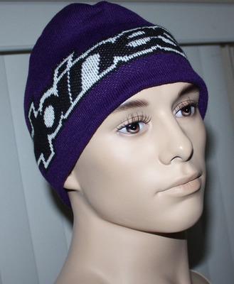 Alpinestars BIG CORP Men's Purple Graphic Beanie Hat (One Size)