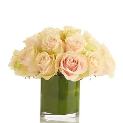 Roses Modernized