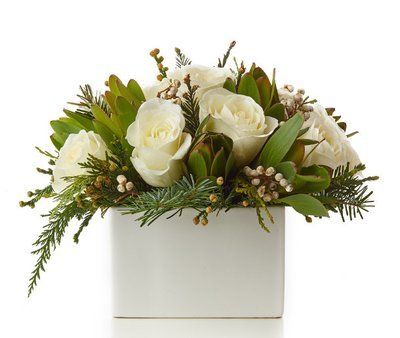 White Rose Holiday