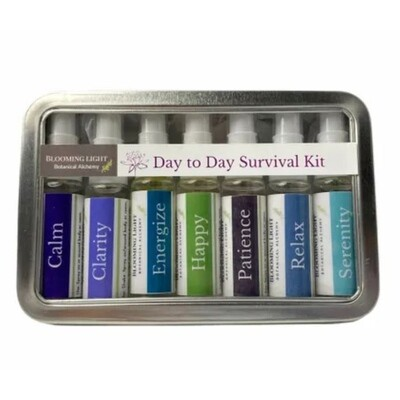 Day to Day Survival Kit
