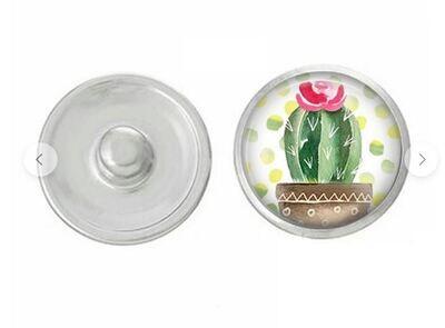 Desert Cactus Snap