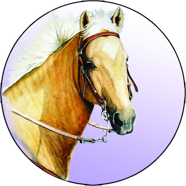 Pure Form Equine Online