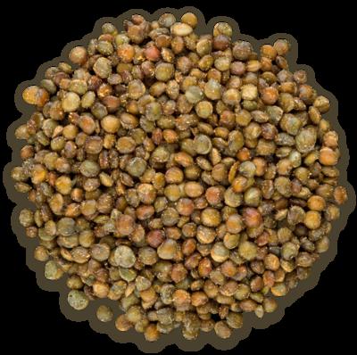 Snacky Day - Lentilles grillées saveur cari bio, vegan et sans-ogm 250g