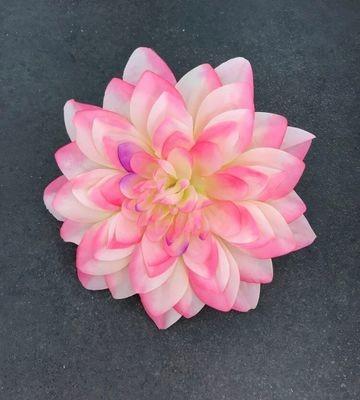 Daalia-kukkapää, kerma/vaaleanpunainen
