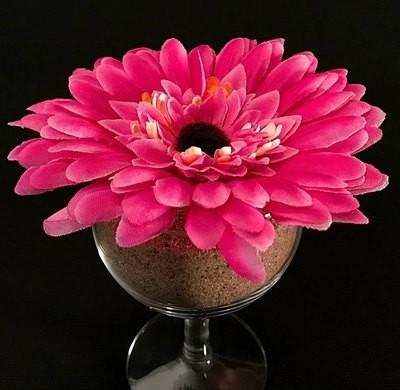 Gerbera-kukkapää, pinkki