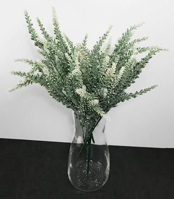 Kanerva tekokasvi, valkoiset kukat