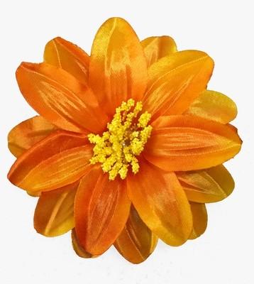 Daalia-kukkapää, oranssi