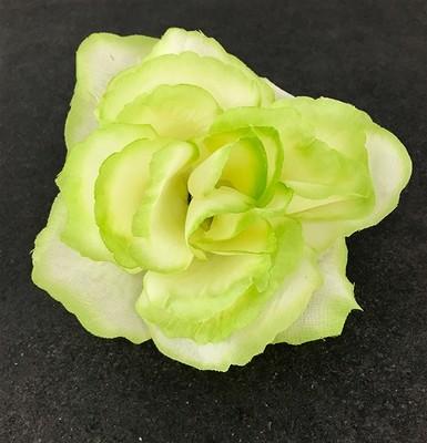Pensasruusu-kukkapää, vihreä