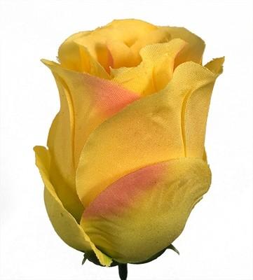 Ruusu-kukkapää, keltainen