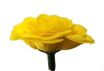 Miniruusu-kukkapää, keltainen