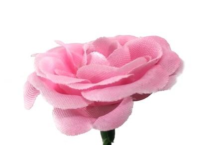 Miniruusu-kukkapää, vaaleanpunainen